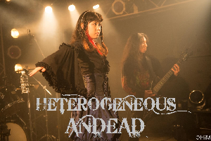 heterogeneous-andead