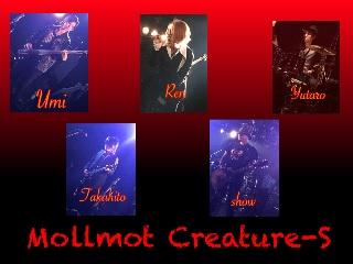 mollmot_ creature_s