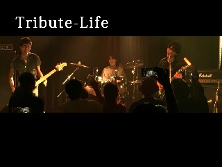tributelife